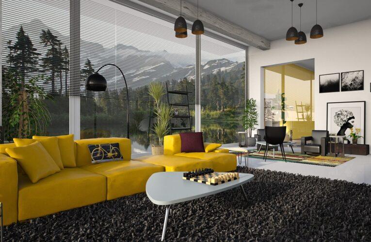 Který koberec si vybrat a proč?